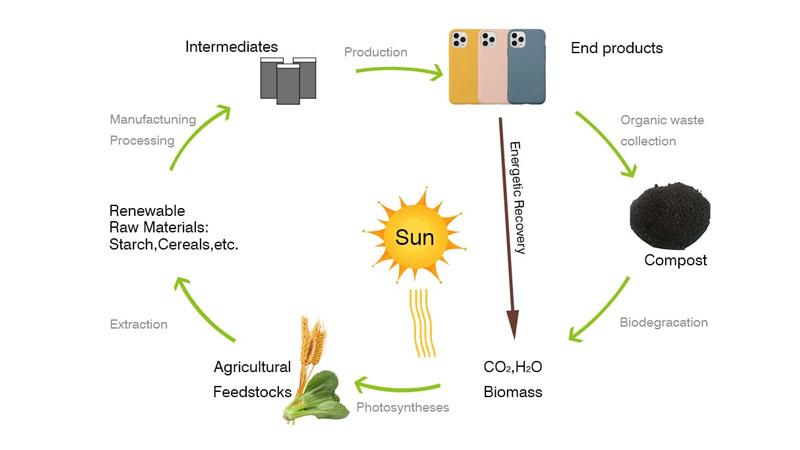 自然から生まれ自然に戻る。地球環境に優しいリサイクル製造
