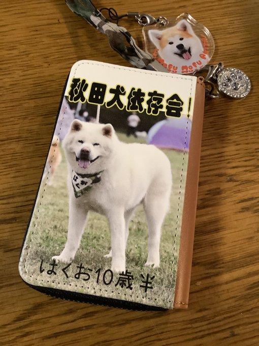 https://me-q.jp #第3回メークでフォトコンテスト #パスケース #秋田犬はくお  #愛犬  素敵な パスケース出来ました。電車に乗るのが楽しくなります。